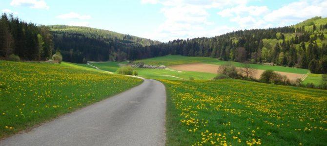 Geführte E-Bike-Tour zu bedeutenden Keltenstätten rund um die Heuneburg